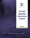 The BIG Litigation Interactive E-Book