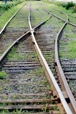 litigation consulting two track strategy
