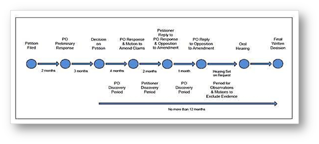pto timeline post grant procedure aia explained infographic