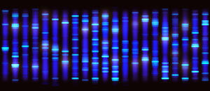 genetic-mutation-cancer-litigation-trial-talc