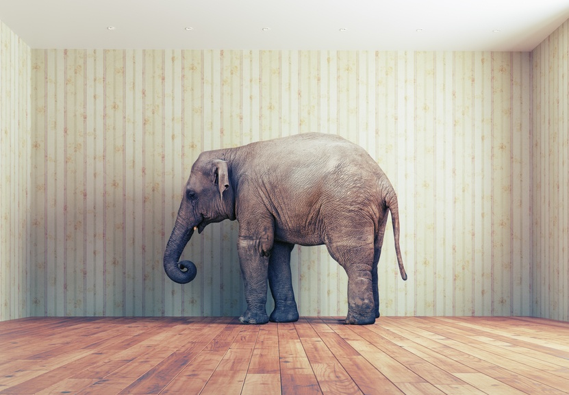 metaphor-analogy-lawyers-courtroom-elephant-room.jpg
